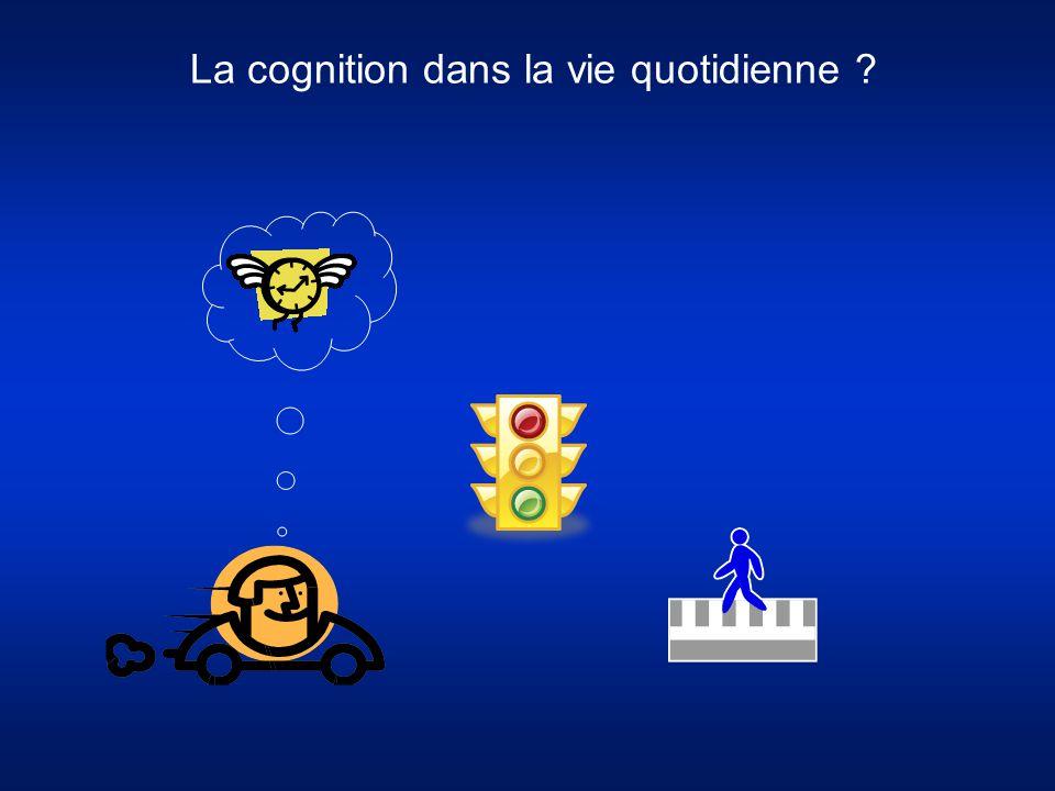 La cognition dans la vie quotidienne ?