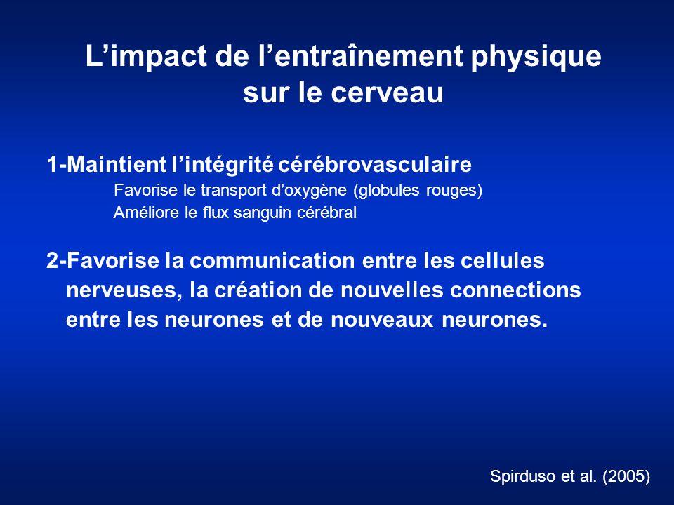 L'impact de l'entraînement physique sur le cerveau 1-Maintient l'intégrité cérébrovasculaire Favorise le transport d'oxygène (globules rouges) Amélior