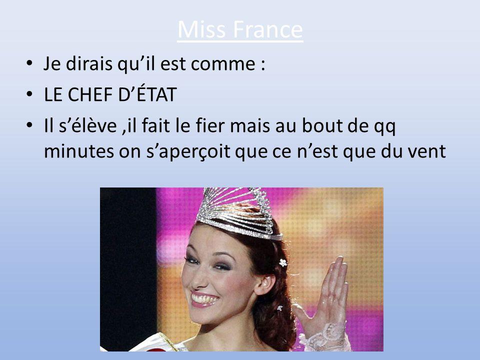 Miss Belgique • Je dirais qu'il est comme : • UNE RUMEUR • Parce qu'il circule de bouche en bouche