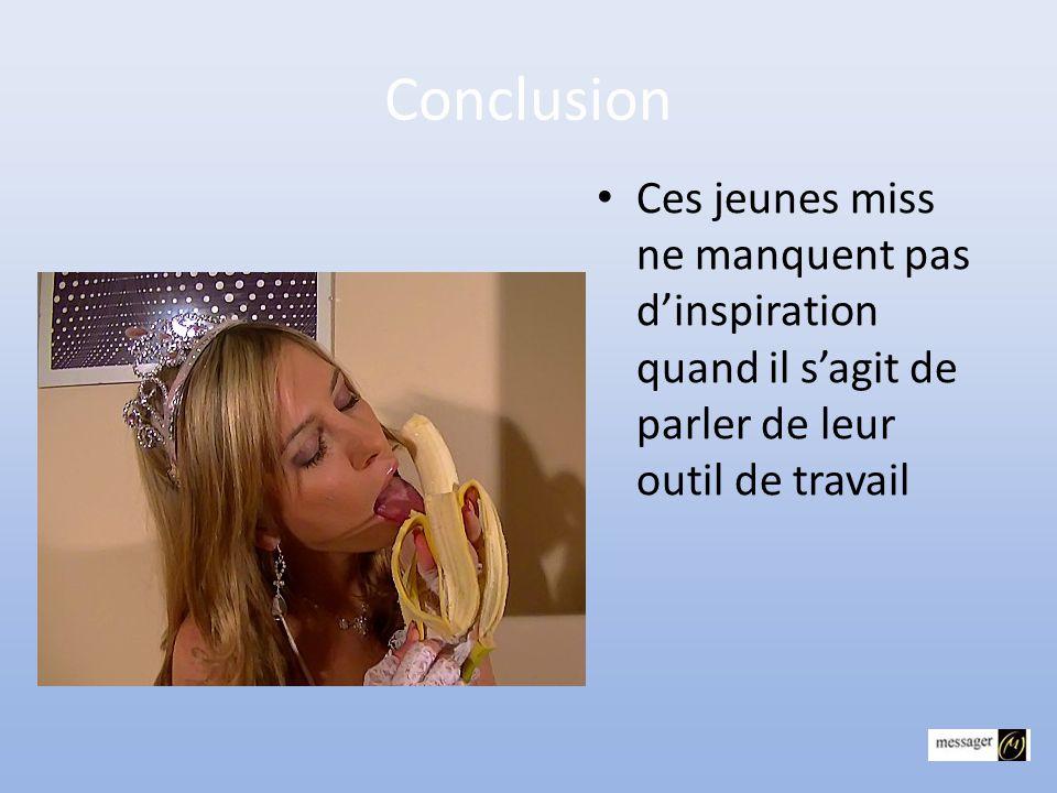 Miss France • Je dirais qu'il est comme : • LE CHEF D'ÉTAT • Il s'élève,il fait le fier mais au bout de qq minutes on s'aperçoit que ce n'est que du v