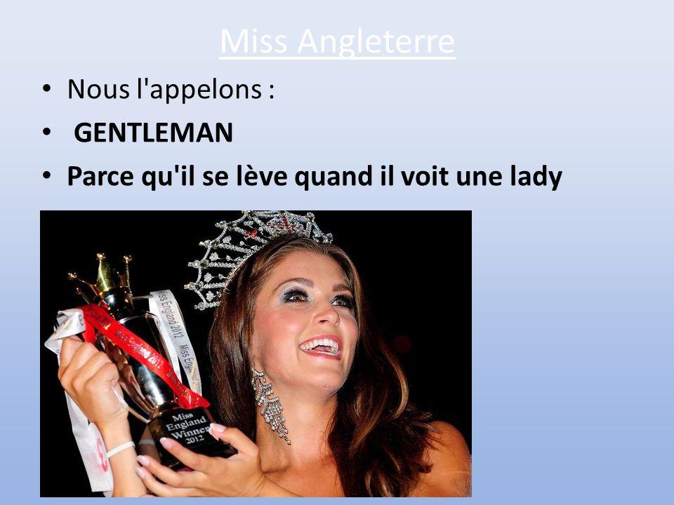 L'Organe Mâle • Lors d'une compétition de Miss Monde, on pose une question aux différentes candidates pour tester leur capacité à faire face à une sit