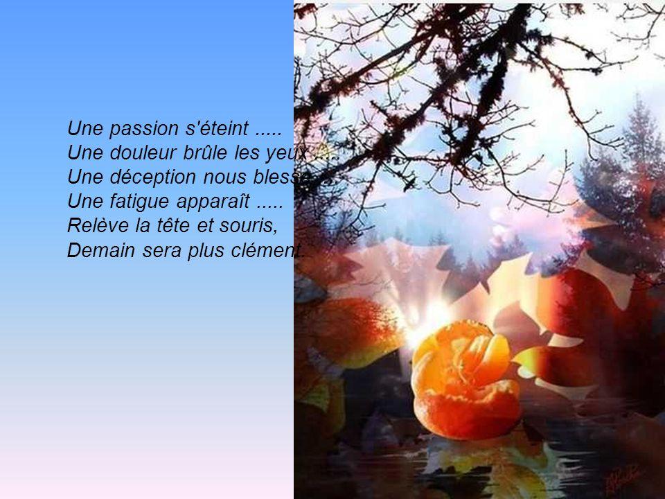 Une passion s éteint.....Une douleur brûle les yeux.....