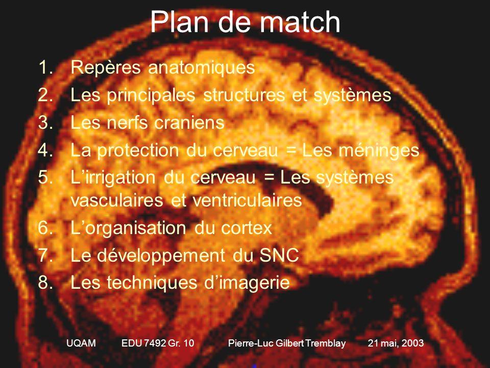 UQAM EDU 7492 Gr. 10 Pierre-Luc Gilbert Tremblay 21 mai, 2003 L'anatomie du système nerveux L'importance des structures de base du système nerveux pou