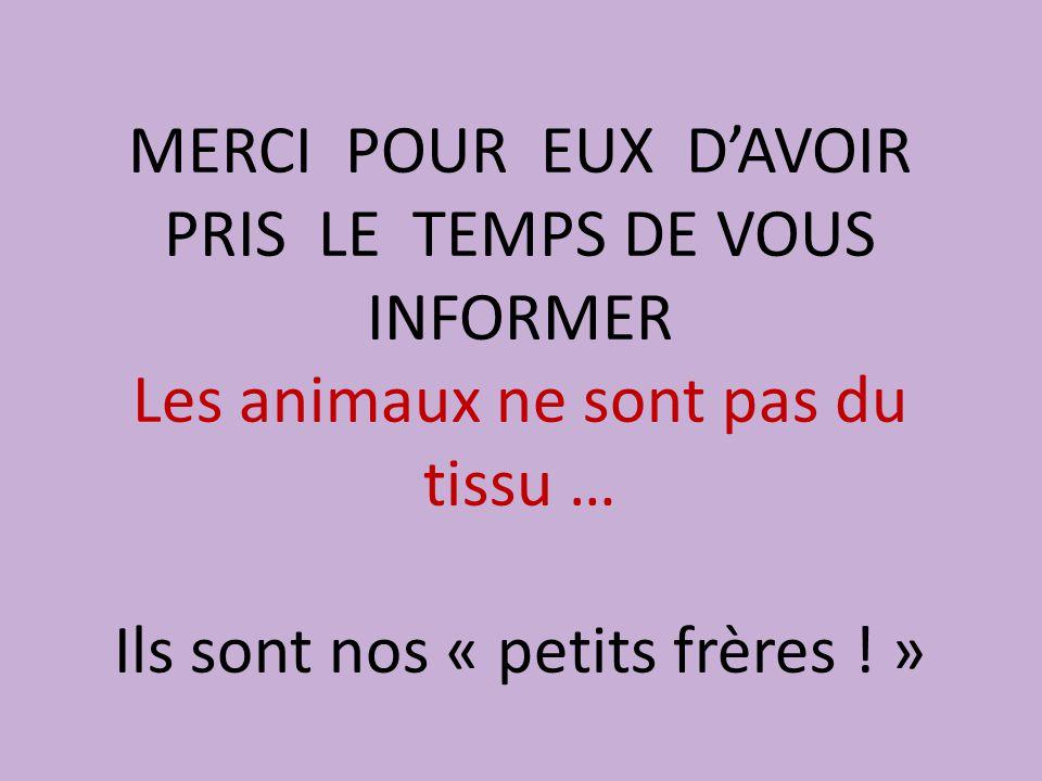 MERCI POUR EUX D'AVOIR PRIS LE TEMPS DE VOUS INFORMER Les animaux ne sont pas du tissu … Ils sont nos « petits frères .