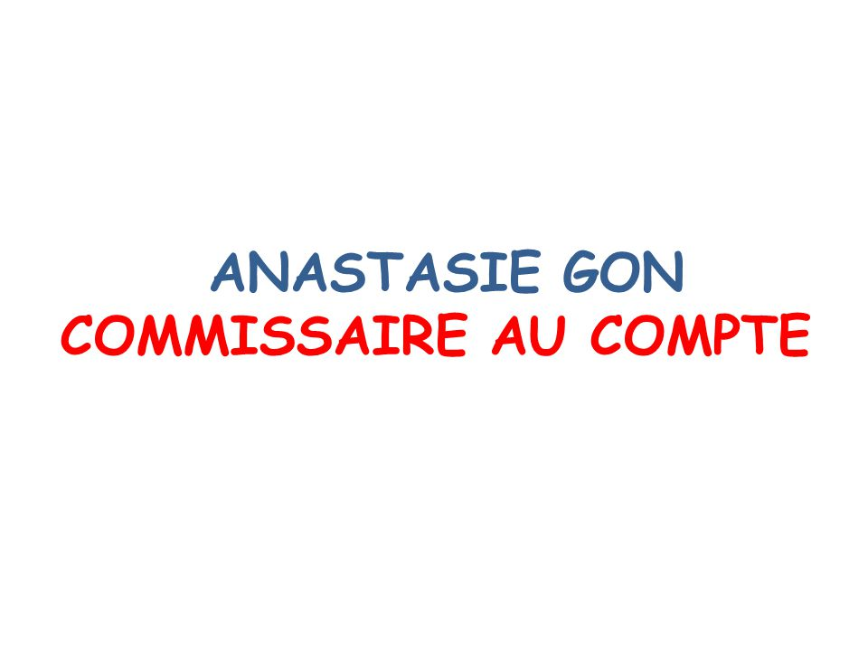 ANASTASIE GON COMMISSAIRE AU COMPTE