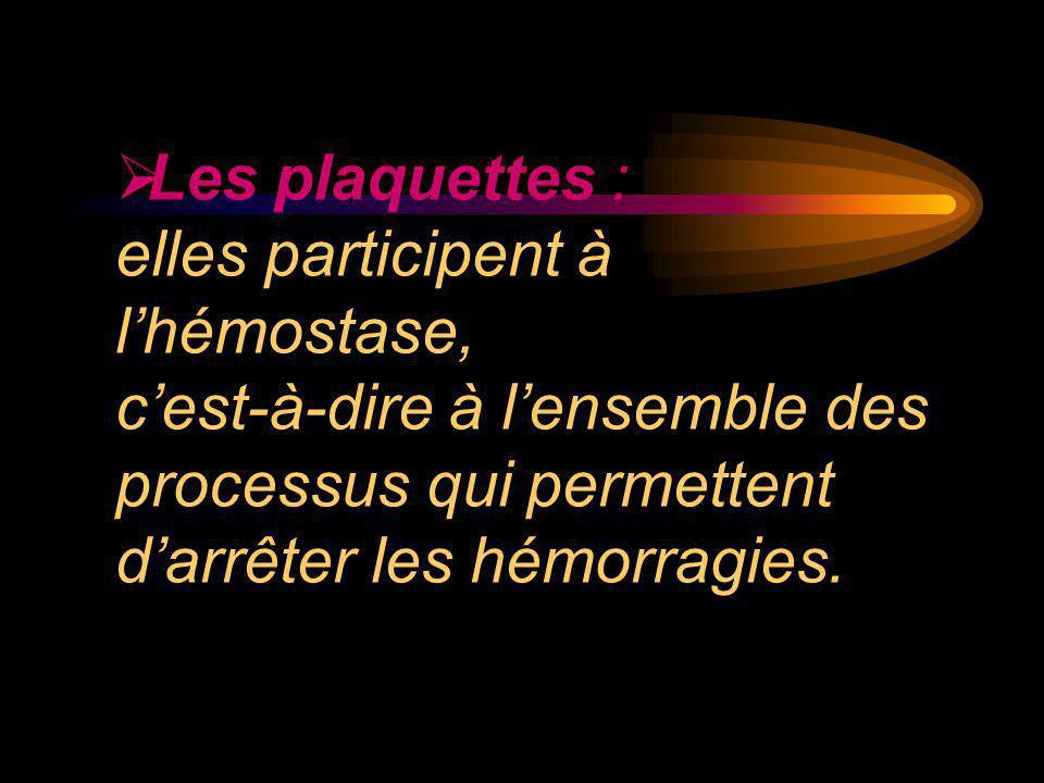  Les plaquettes : elles participent à l'hémostase, c'est-à-dire à l'ensemble des processus qui permettent d'arrêter les hémorragies.