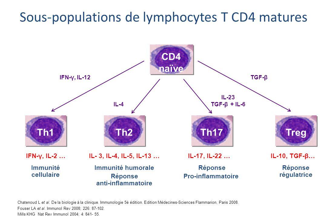 Th1 IFN-γ, IL-2 …IL- 3, IL-4, IL-5, IL-13 … CD4 naïve IL-17, IL-22 …IL-10, TGF-β… Immunité cellulaire Immunité humorale Réponse anti-inflammatoire Réponse Pro-inflammatoire TregTh2Th17 Réponse régulatrice IFN-γ, IL-12 IL-4 TGF-β IL-23 TGF-β + IL-6 Sous-populations de lymphocytes T CD4 matures Chatenoud L et al.