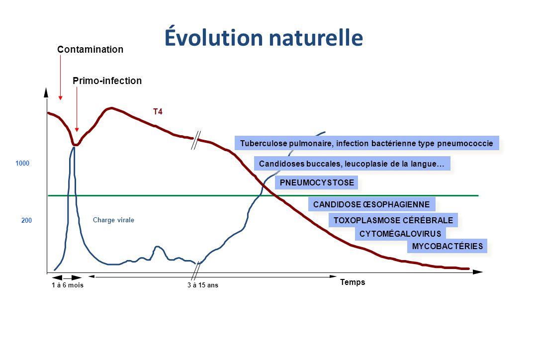 Évolution naturelle T4 Temps 1 à 6 mois3 à 15 ans 200 1000 Charge virale Primo-infection Contamination PNEUMOCYSTOSE Candidoses buccales, leucoplasie