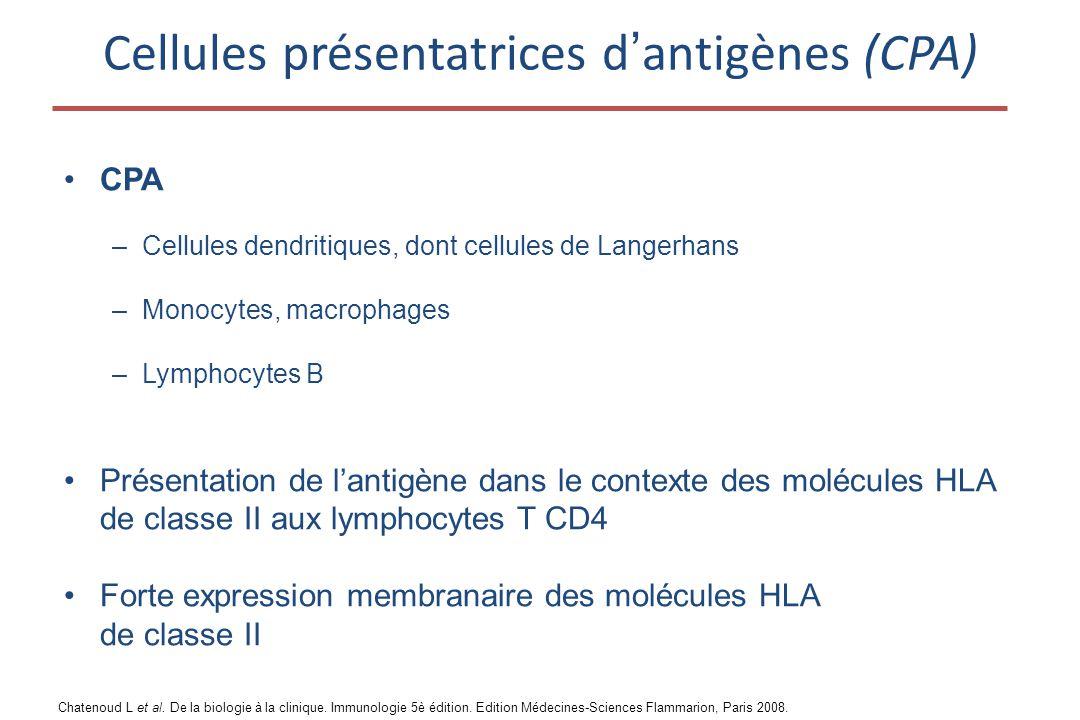 Cellules présentatrices d'antigènes (CPA) •CPA –Cellules dendritiques, dont cellules de Langerhans –Monocytes, macrophages –Lymphocytes B •Présentation de l'antigène dans le contexte des molécules HLA de classe II aux lymphocytes T CD4 •Forte expression membranaire des molécules HLA de classe II Chatenoud L et al.