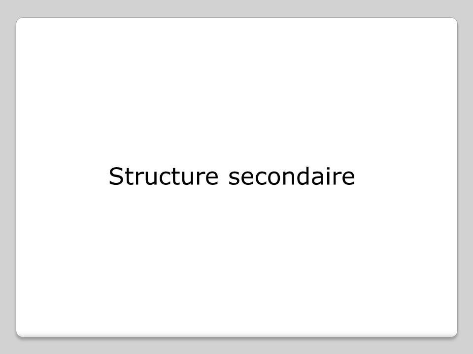 Structure secondaire