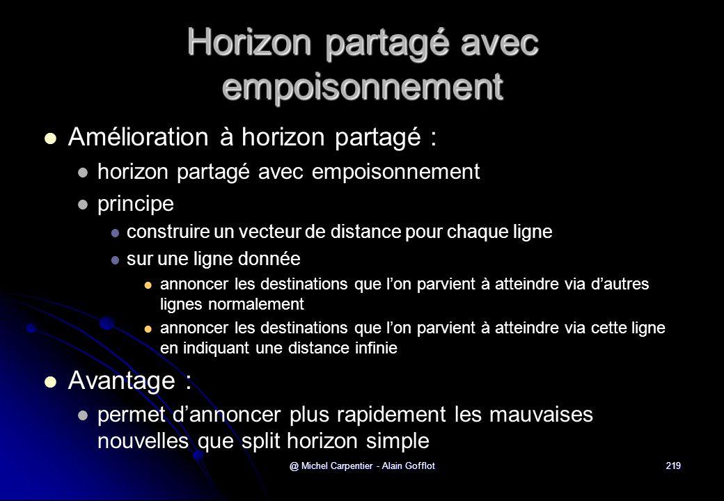 @ Michel Carpentier - Alain Gofflot219 Horizon partagé avec empoisonnement   Amélioration à horizon partagé :   horizon partagé avec empoisonnemen