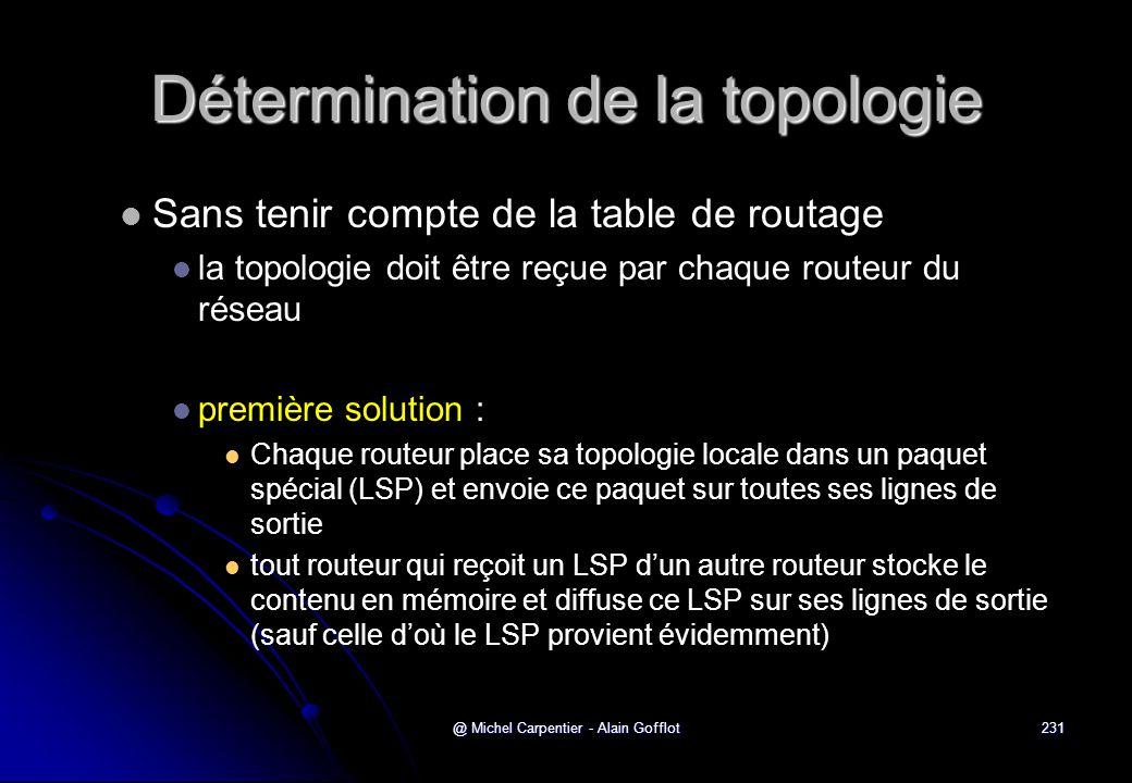 @ Michel Carpentier - Alain Gofflot231 Détermination de la topologie   Sans tenir compte de la table de routage   la topologie doit être reçue par