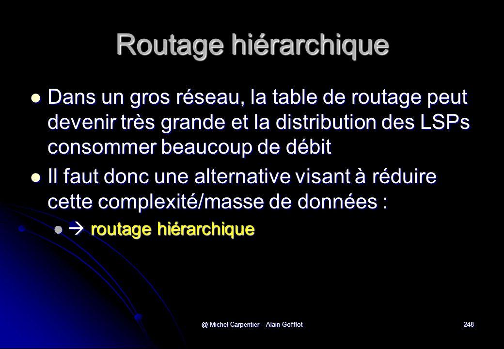 @ Michel Carpentier - Alain Gofflot248 Routage hiérarchique  Dans un gros réseau, la table de routage peut devenir très grande et la distribution des