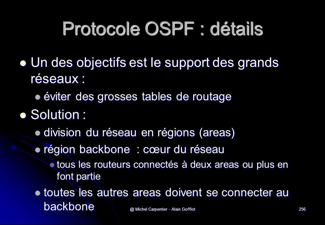 @ Michel Carpentier - Alain Gofflot256 Protocole OSPF : détails  Un des objectifs est le support des grands réseaux :  éviter des grosses tables de