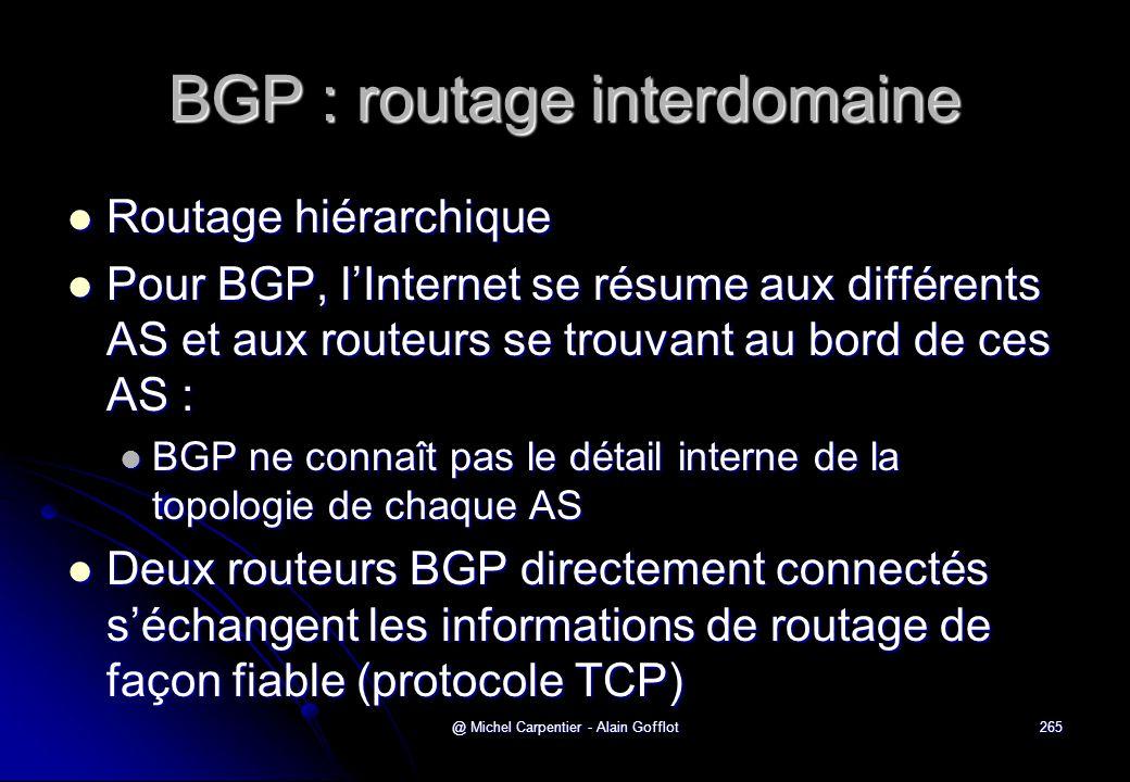 @ Michel Carpentier - Alain Gofflot265 BGP : routage interdomaine  Routage hiérarchique  Pour BGP, l'Internet se résume aux différents AS et aux rou