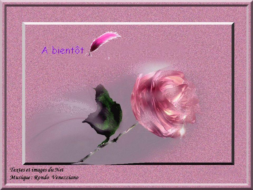 Le bonheur c'est …. c'est un mot tendre qui réchauffe le cœur.