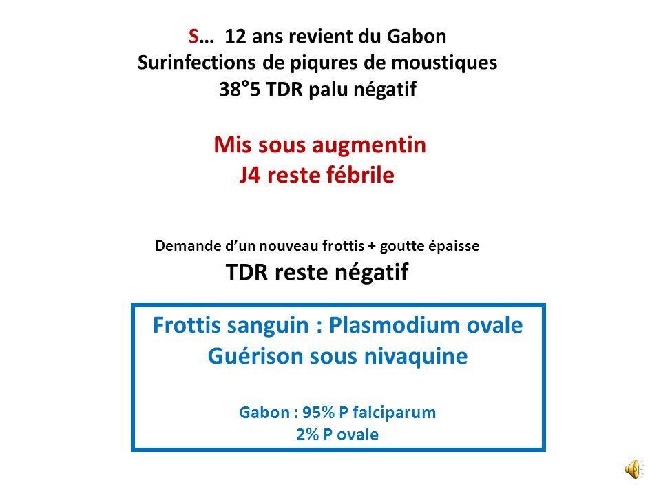 S… 12 ans revient du Gabon Surinfections de piqures de moustiques 38°5, Paludisme : Test rapide négatif Mis sous Augmentin J4 : reste à 38°