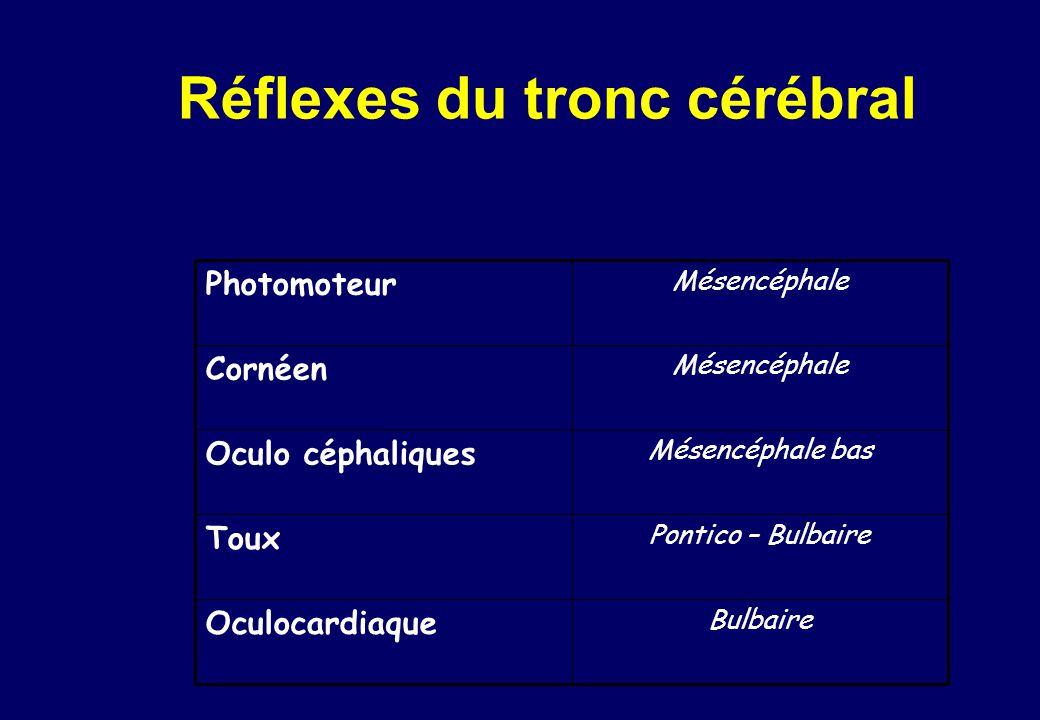 Réflexes du tronc cérébral Photomoteur Mésencéphale Cornéen Mésencéphale Oculo céphaliques Mésencéphale bas Toux Pontico – Bulbaire Oculocardiaque Bulbaire