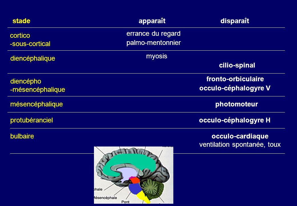 cortico -sous-cortical diencéphalique diencépho -mésencéphalique mésencéphalique protubéranciel bulbaire apparaîtdisparaîtstade errance du regard palmo-mentonniercilio-spinal myosis occulo-céphalogyre V fronto-orbiculaire photomoteur occulo-céphalogyre H occulo-cardiaque ventilation spontanée, toux