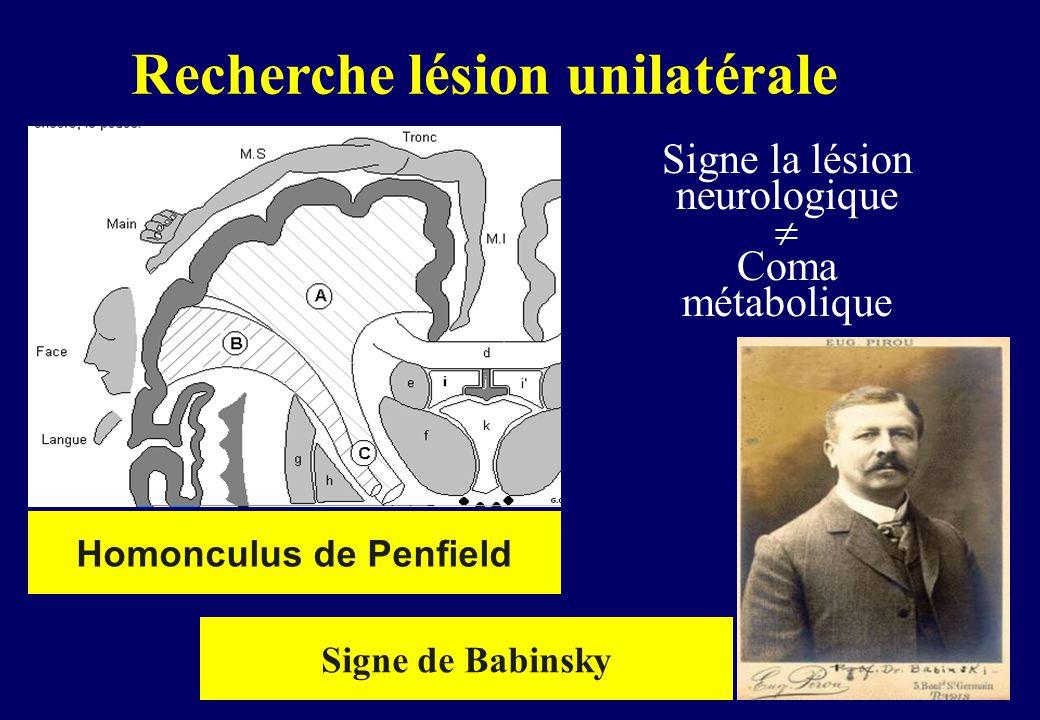 Signe la lésion neurologique  Coma métabolique Homonculus de Penfield Recherche lésion unilatérale Signe de Babinsky