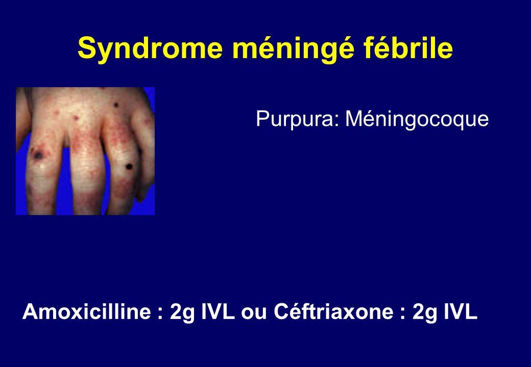 Purpura: Méningocoque Amoxicilline : 2g IVL ou Céftriaxone : 2g IVL