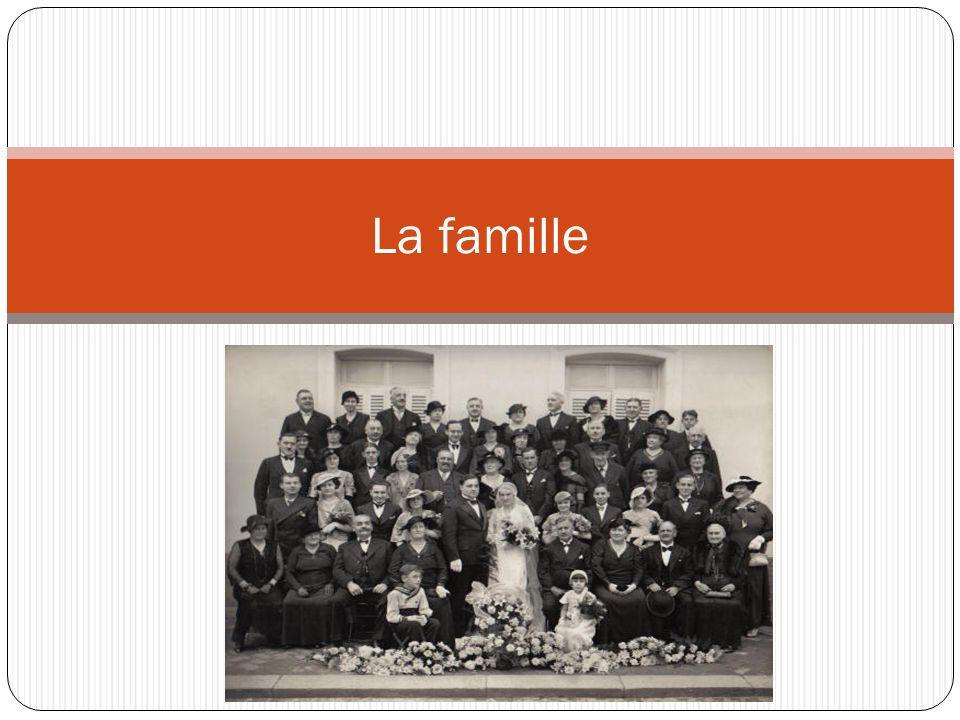 Les transformations de la famille depuis les années 60 ◊ Élévation du taux d´activité féminin ◊ Disminution du nombre de familles nombreuses ◊ Transformations des rôles.