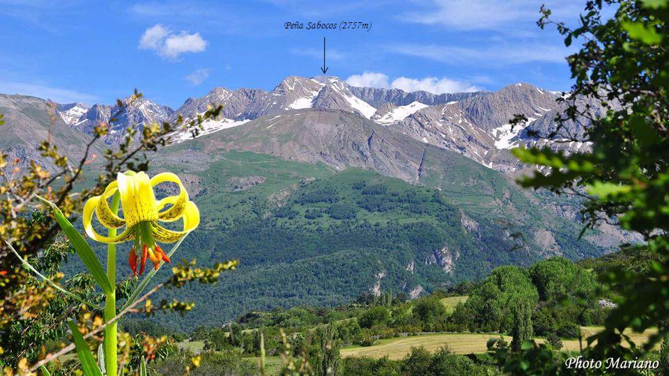........ Monte Erlo (1026m)