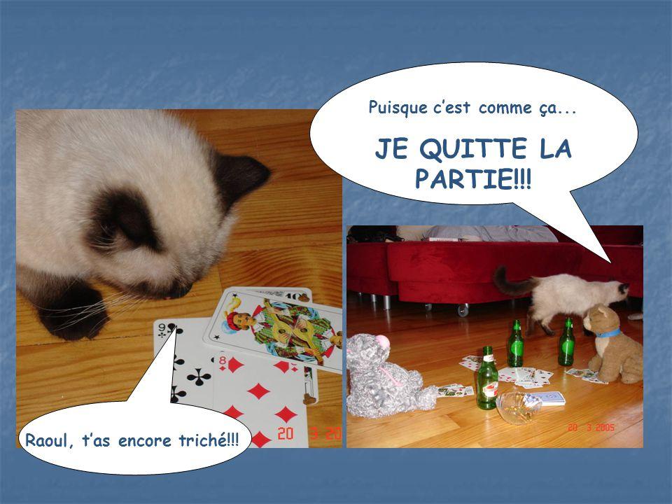 Raoul, t'as encore triché!!! Puisque c'est comme ça... JE QUITTE LA PARTIE!!!