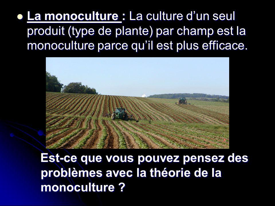 Est-ce que vous pouvez pensez des problèmes avec la théorie de la monoculture ? Est-ce que vous pouvez pensez des problèmes avec la théorie de la mono