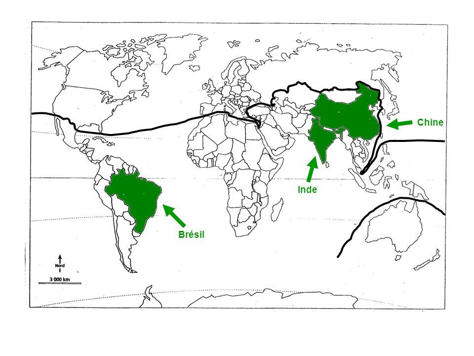 Brésil Inde Chine
