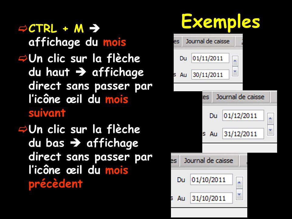 Exemples  CTRL + M  affichage du mois  Un clic sur la flèche du haut  affichage direct sans passer par l'icône œil du mois suivant  Un clic sur l