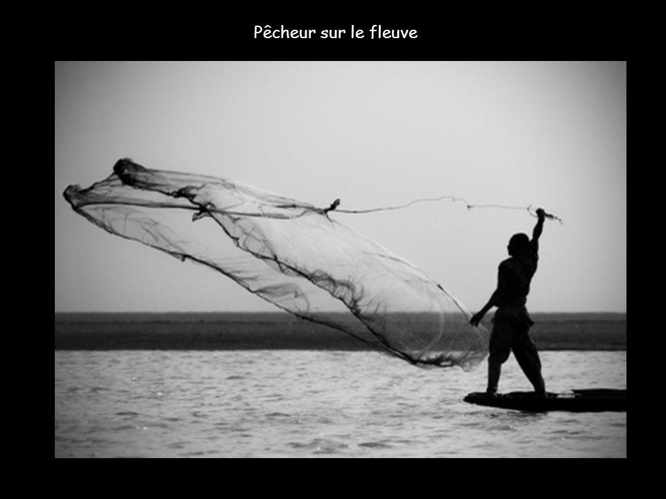 Les pêcheurs attitrés de la boucle du Niger sont tous de la même ethnie, les Bozo. L'envasement des fonds détruit malheureusement les zones de frai, e