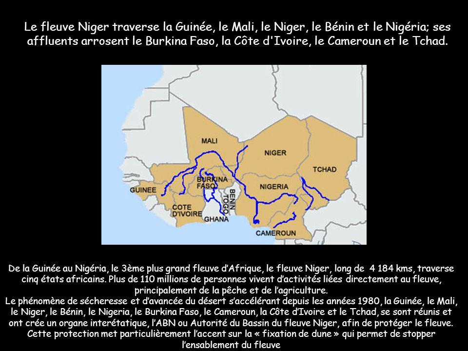 """Le """"Nil des Noirs"""" en péril C'est entre Tombouctou et Gao, dans la légendaire « boucle » du Niger, que le fleuve est le plus agressé par l'ensablement"""