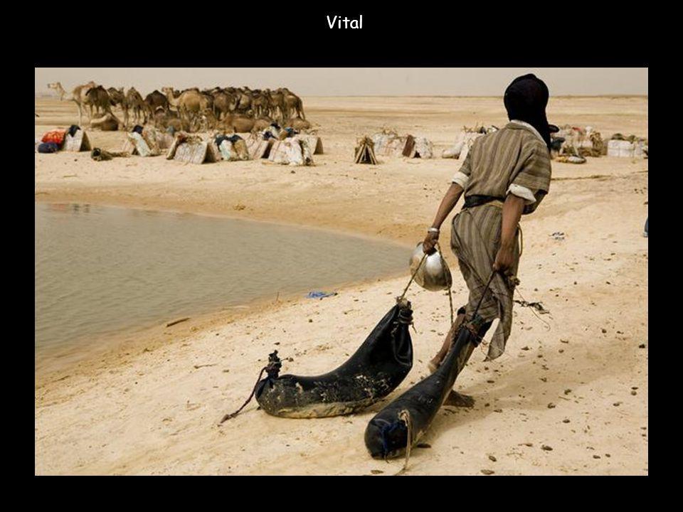 Près du village de Dorogundgé, des nomades venus d'un campement distant de quatre heures de marche font provision d'eau avec des bidons de plastique e