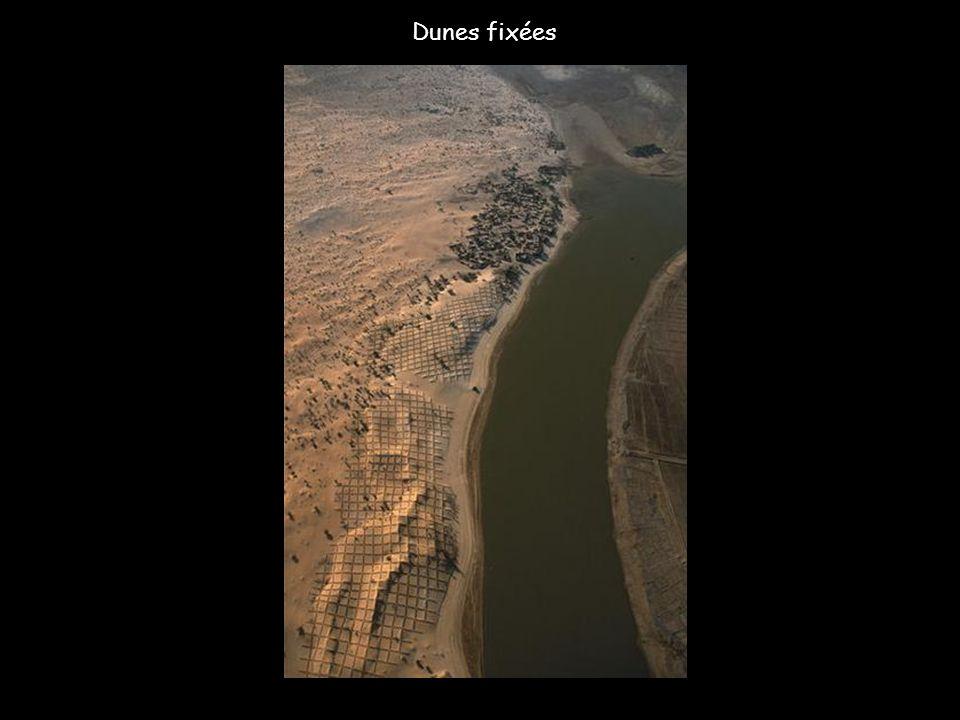 La nature a sérieusement frappé autour de la petite ville de Guidjo, près du lac Débo, aujourd'hui en voie d'assèchement. Prisonnier du sable