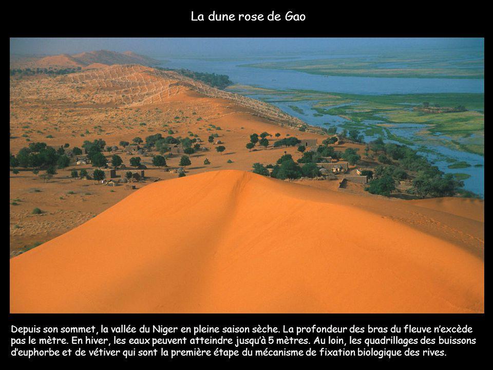 De la Guinée au Nigéria, le 3ème plus grand fleuve d'Afrique, le fleuve Niger, long de 4 184 kms, traverse cinq états africains. Plus de 110 millions