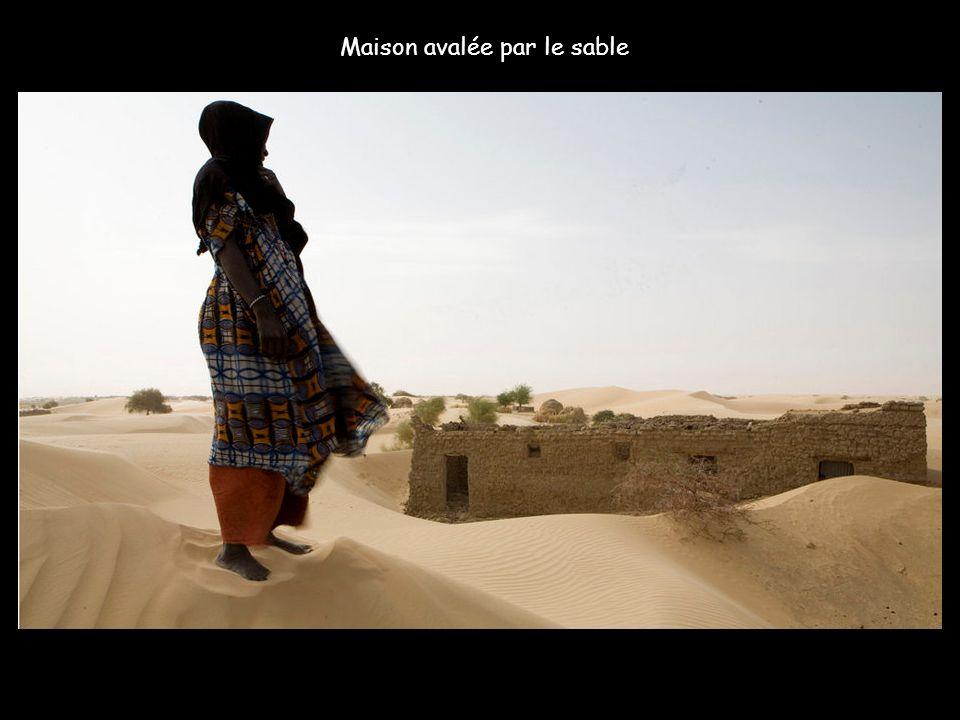 Dans l'école d'Egachar, un village de nomades sahéliens réfugiés ici depuis les grandes sécheresses des années 80, le sable arrive jusqu'au tableau no