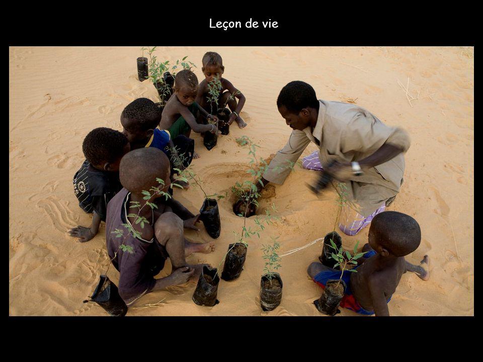 Egoyan est un village modèle. En quatre ans, ses 300 habitants ont réussi à stabiliser 100 hectares au bord du Niger grâce à des plantations d'acac