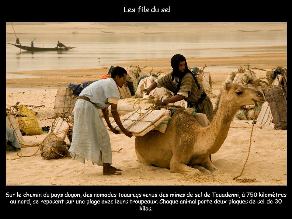 Sur le fleuve Niger près de Diafarabe-Mopti
