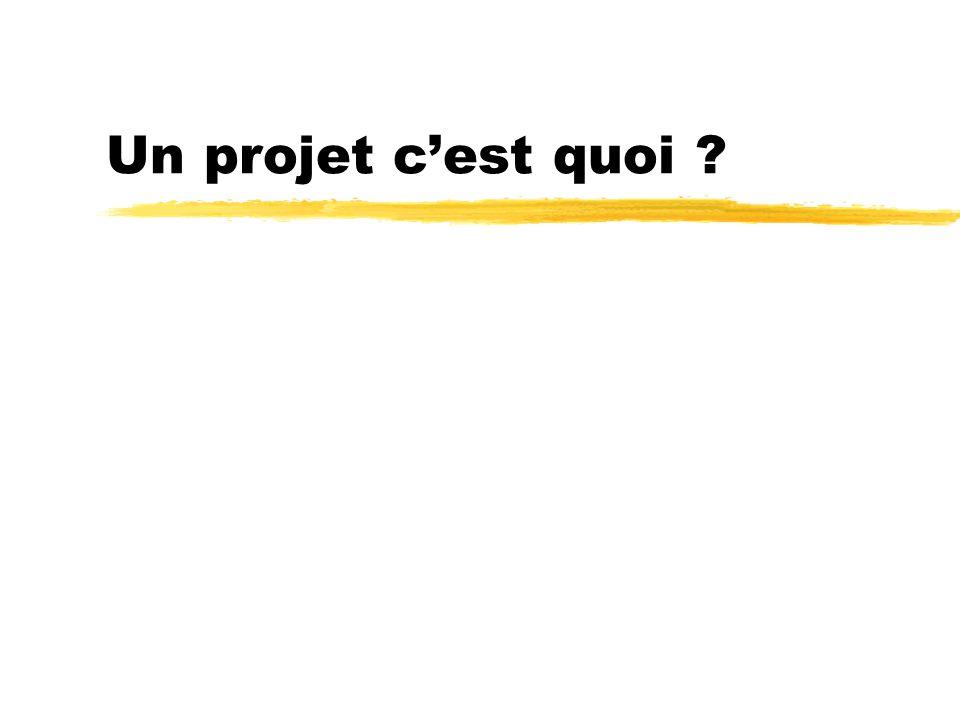 Un projet c'est quoi ?