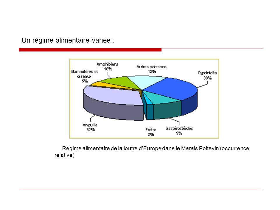 Un régime alimentaire variée : Régime alimentaire de la loutre d'Europe dans le Marais Poitevin (occurrence relative)