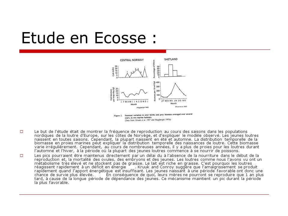 Etude en Ecosse :  Le but de l'étude était de montrer la fréquence de reproduction au cours des saisons dans les populations nordiques de la loutre d