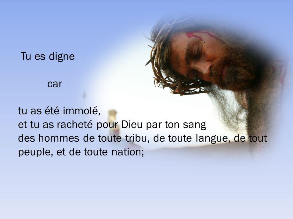 Apocalypse 15:4 4 Qui ne craindrait, Seigneur, et ne glorifierait ton nom.