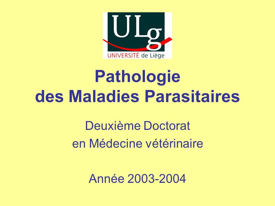 Pathogénie et pathologie Les principaux symptômes sont : •Chute de la productivité •Anorexie •Diarrhée 2ème Doctorat – Les maladies parasitaires des bovins