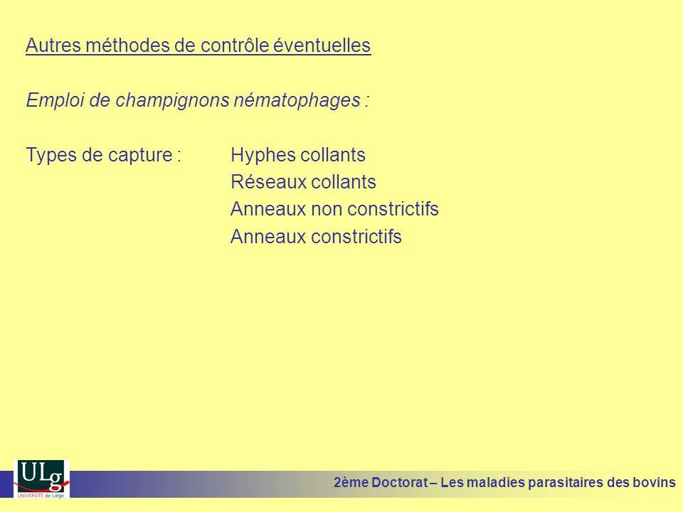 Autres méthodes de contrôle éventuelles Emploi de champignons nématophages : Types de capture :Hyphes collants Réseaux collants Anneaux non constricti