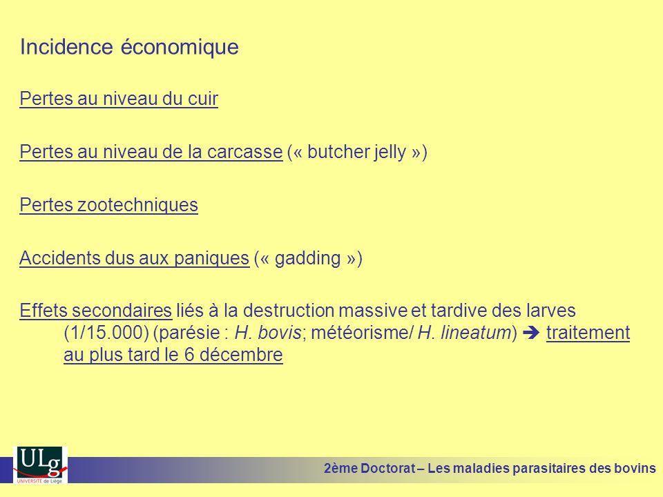 Incidence économique Pertes au niveau du cuir Pertes au niveau de la carcasse (« butcher jelly ») Pertes zootechniques Accidents dus aux paniques (« g