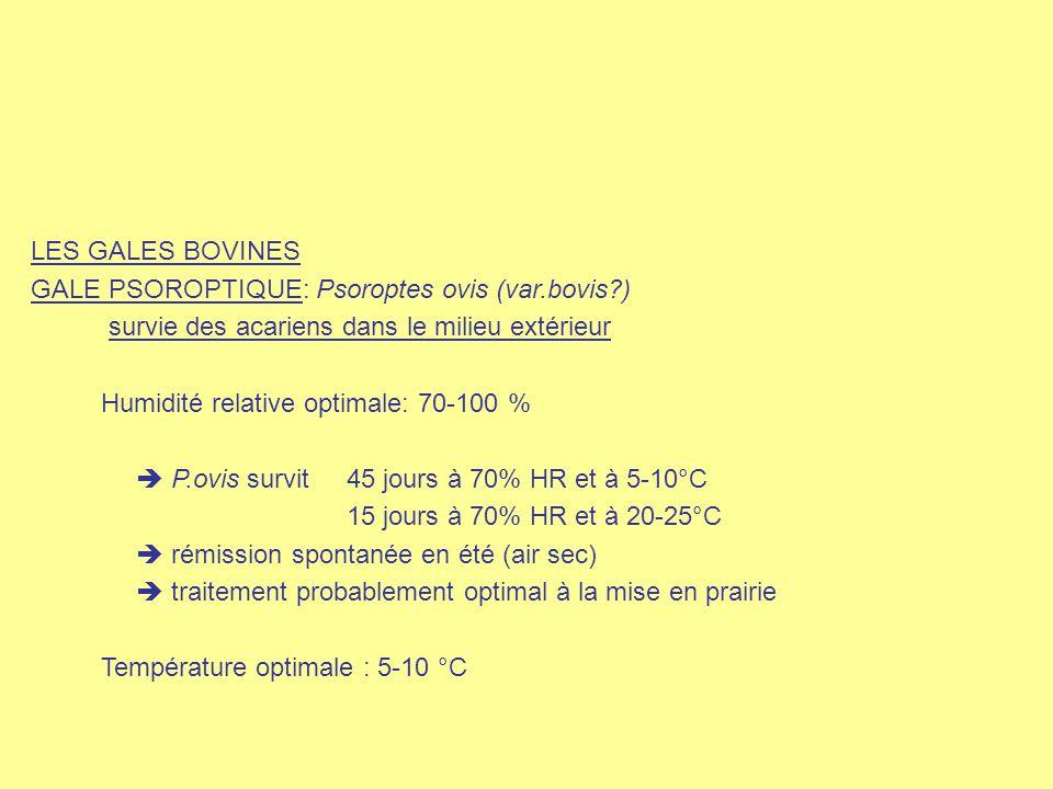 LES GALES BOVINES GALE PSOROPTIQUE: Psoroptes ovis (var.bovis?) survie des acariens dans le milieu extérieur Humidité relative optimale: 70-100 %  P.