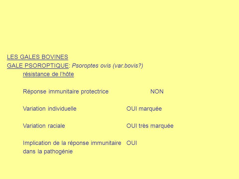 LES GALES BOVINES GALE PSOROPTIQUE: Psoroptes ovis (var.bovis?) résistance de l'hôte Réponse immunitaire protectriceNON Variation individuelleOUI marq