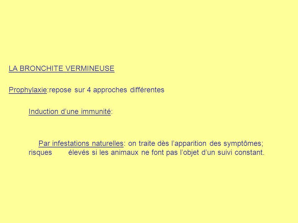 LA BRONCHITE VERMINEUSE Prophylaxie:repose sur 4 approches différentes Induction d'une immunité: Par infestations naturelles: on traite dès l'appariti