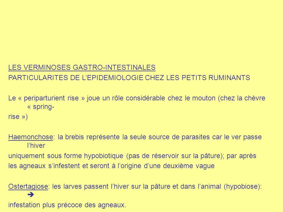 LES VERMINOSES GASTRO-INTESTINALES PARTICULARITES DE L'EPIDEMIOLOGIE CHEZ LES PETITS RUMINANTS Le « periparturient rise » joue un rôle considérable ch